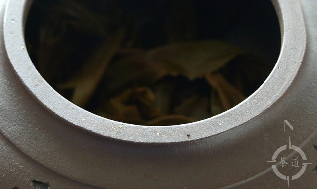 sheng Pu-erh tea in a clay teapot