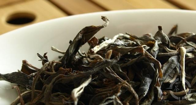 sheng Pu-erh tea