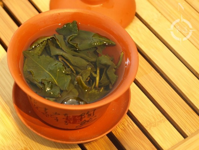 Alishan tea steeping  in a gaiwan