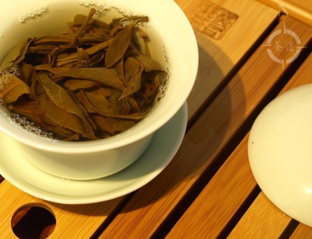 steeping Bu Lang Sheng Pu-erh tea in a gaiwan