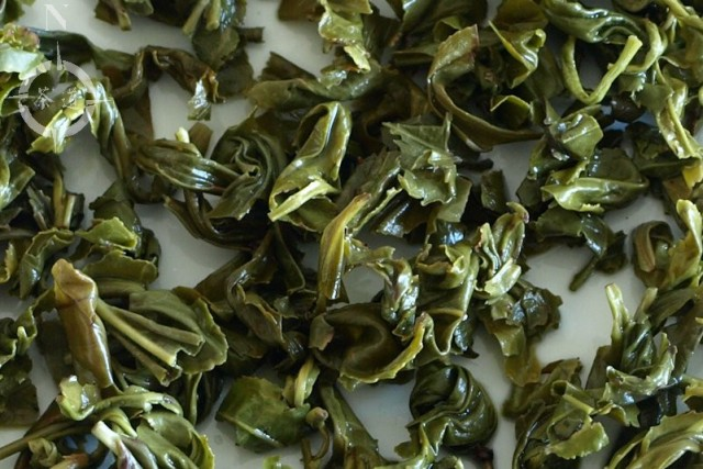 used ecological green gunpowder tea leaves