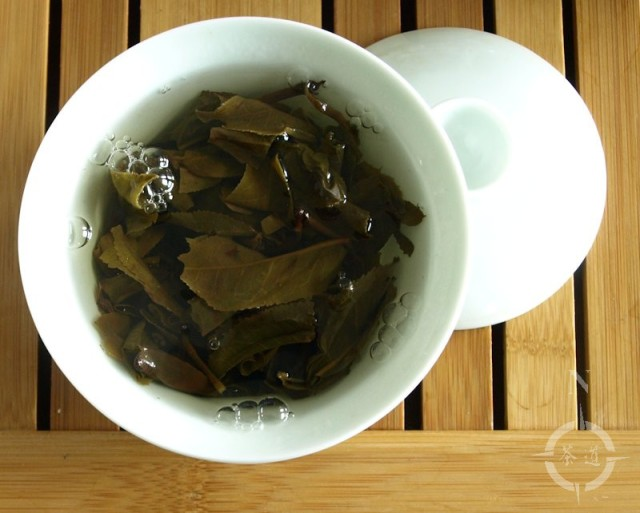steeping-2014-sen-zhi-kui-kokang-raw-dark-tea-in-a-gaiwan