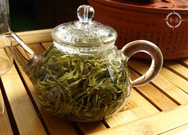Xian Zhi - in pot