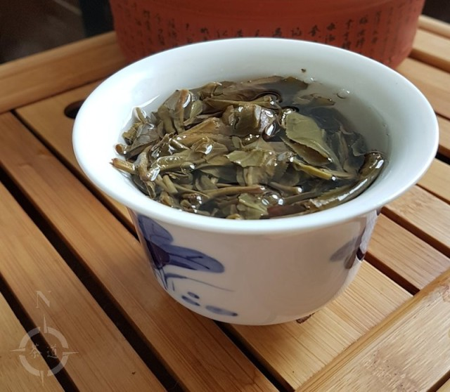 2014 Chawangpu Ban Payasi steeping in gaiwan