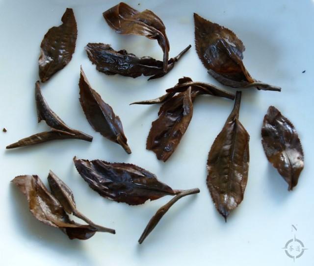 Kenya Rhino - used leaf