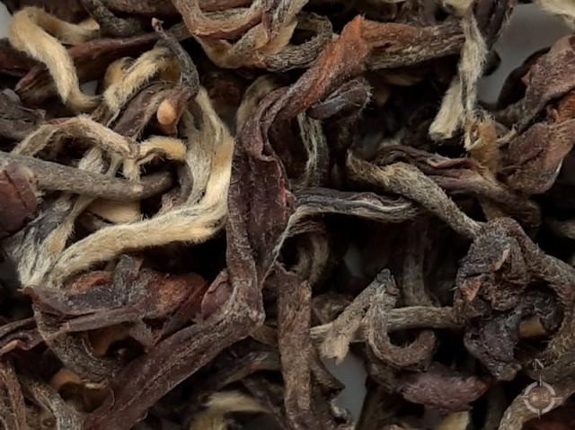 Rohini Enigma Gold - dry leaf
