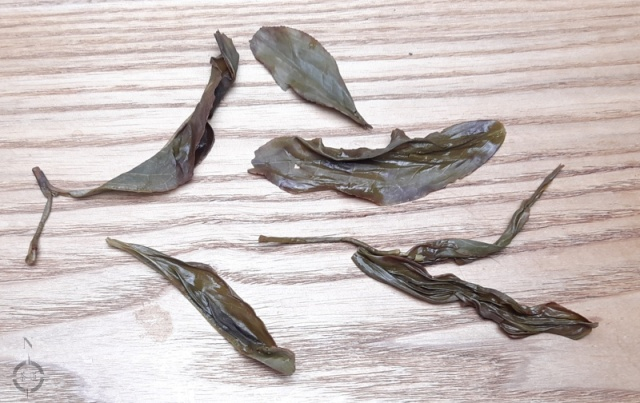 Feng Huang Da Wu Ye Dancong - used leaves