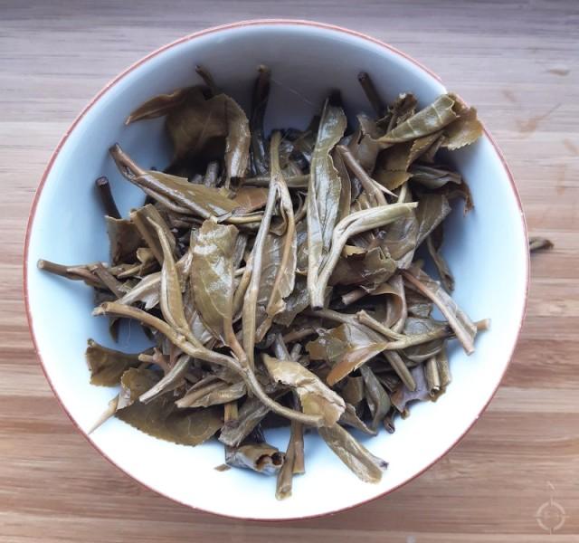 Autumn 2018 Jingmai gushu - used leaves