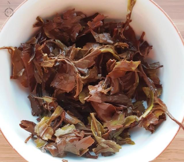 Oolong Koushun - used leaves