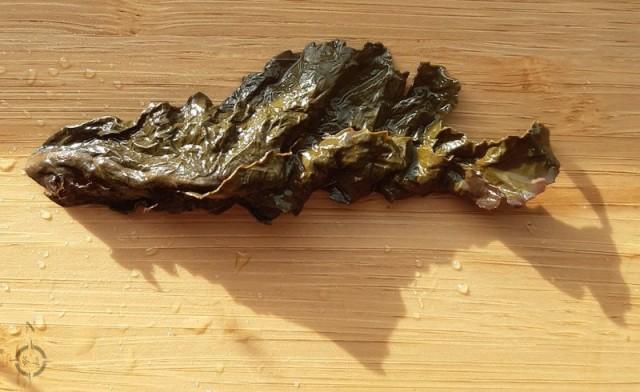 gui fei - single used leaf