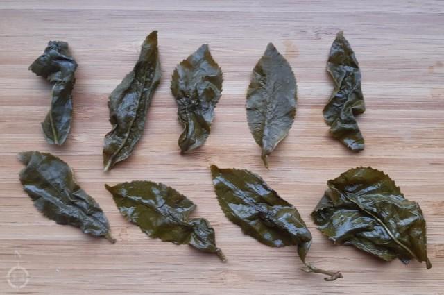 Moychay Alishan Qing Xiang Gaba - used leaves 2